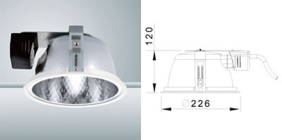 Rise Downlight